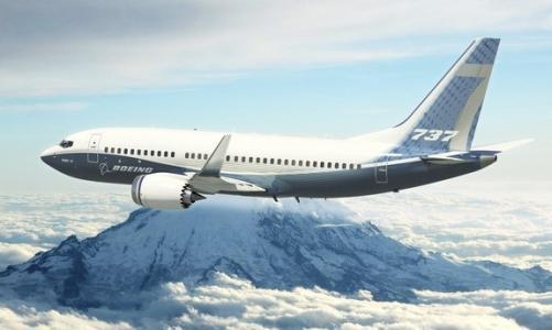 声称发现埃航空难最新证据 美终宣布停飞737 MAX