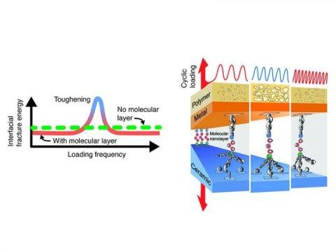 在动态加载过程中 Nanoglue可以使复合材料更加坚韧几倍