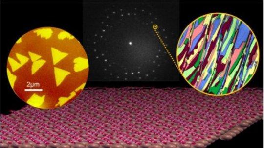 Borophene作为2D材料平台发展