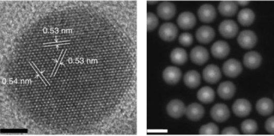 发光纳米粒子可以提供更安全的成像活细胞