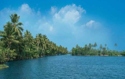 Kerala Feeds计划从北方购买原材料