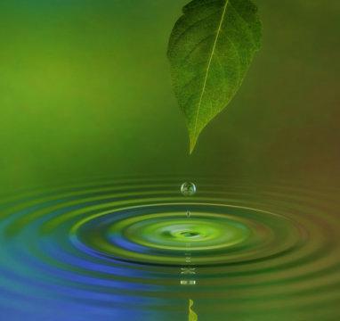 可再生能源:一体化光驱水分解