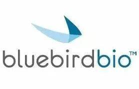 Bluebird Bio首席执行官以180万美元的价格为基因疗法辩护