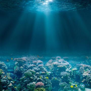 使用机器人和人工智能来了解深海