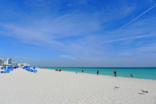 新的豪华高层反映了迈阿密海滩复苏的公寓市场