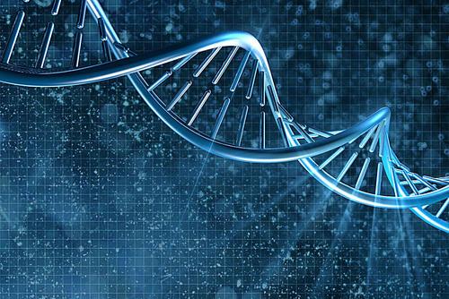 复旦DNA新技术鉴定331英烈遗骸