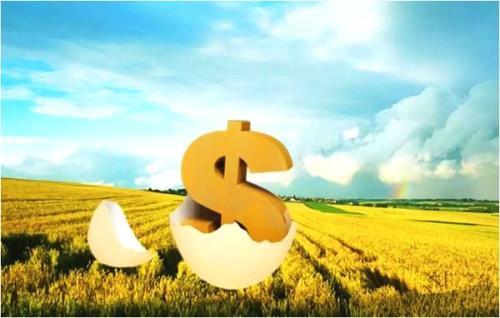农业供应链金融作为农村金融的主要组成部分