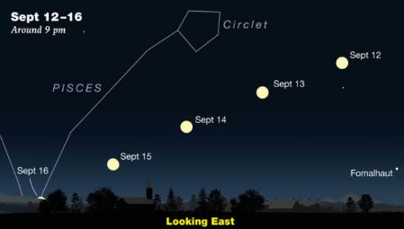 与金星 木星和土星一起登记:并探索夏季三角。