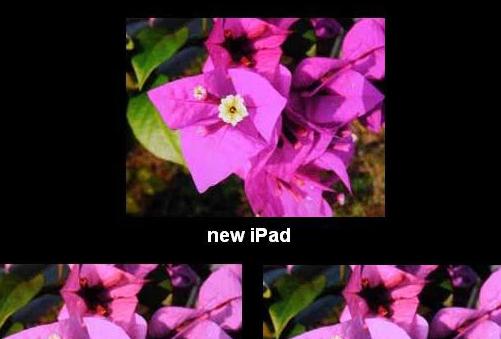 测试确认新iPad的显示接近工作室参考质量