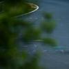 宾利在纽伯格林24小时为比赛和公路赛车做准备