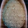 Google现在提供无密码登录-如果您使用的是Android手机