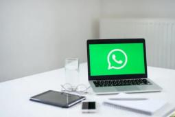 WhatsApp将很快让您通过其桌面应用程序将图像作为贴纸发送